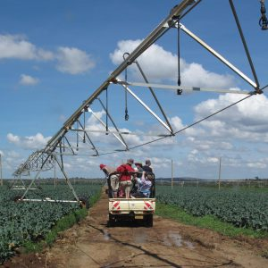 Agriculture Study Tour to Kenya with Green Shoots