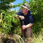 Morley Farm Manager David Jones tree-planting in South Africa