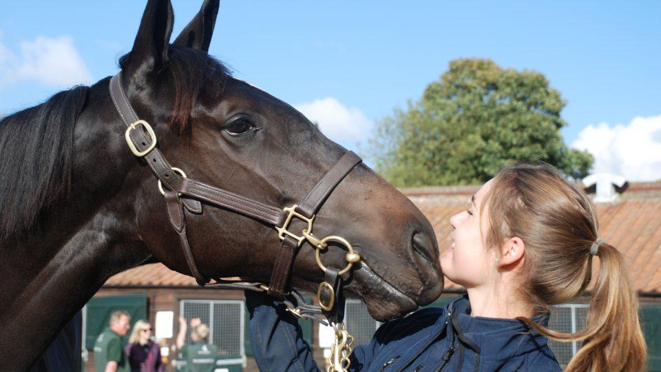 Green Shoots BBC World Service radio documentary Horses for Courses